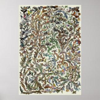 Árbol de la vida - poster de la evolución - color