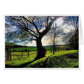 Árbol de la vida felicitacion