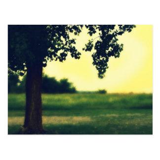 Árbol de la vida tarjeta postal