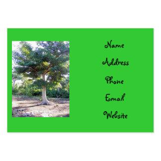 Árbol de las tarjetas del Sabiduría-negocio Tarjetas De Visita Grandes