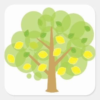 Árbol de limón lindo pegatina cuadrada