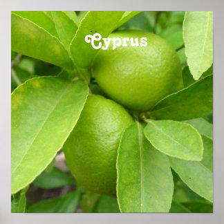Árbol de limón póster