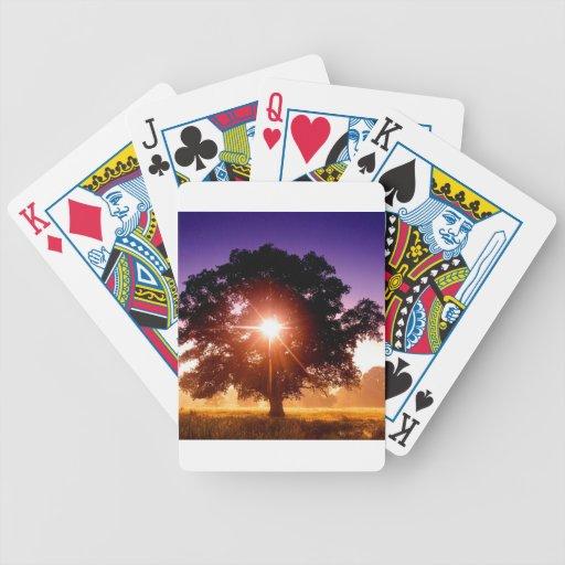 Árbol de los árboles de la vida Devon Inglaterra Baraja Cartas De Poker