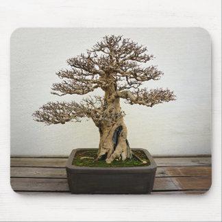 Árbol de los bonsais de la granada tapetes de raton