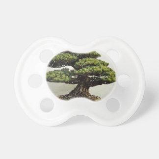 Árbol de los bonsais de White Pine del japonés Chupetes Para Bebes