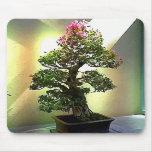 Árbol de los bonsais del Bougainvillea Alfombrillas De Ratón