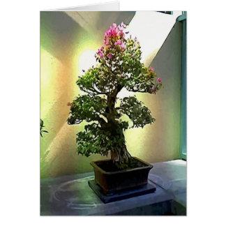 Árbol de los bonsais del Bougainvillea Tarjeta De Felicitación
