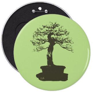 árbol de los bonsais pin redondo 15 cm