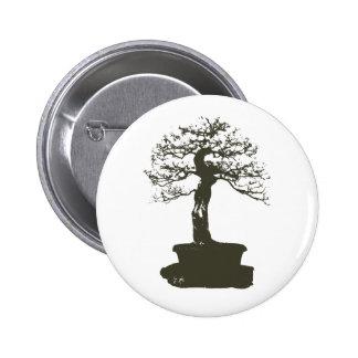 árbol de los bonsais pin redondo 5 cm