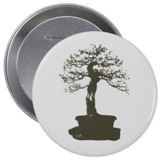 árbol de los bonsais pin redondo 10 cm