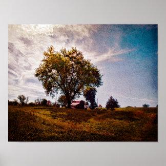 Árbol de los pobres del Poster-