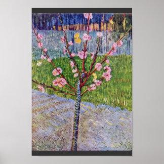 Árbol de melocotón floreciente de Vincent van Gogh Póster
