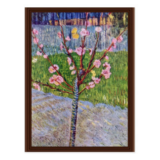 Árbol de melocotón floreciente de Vincent van Gogh Postales