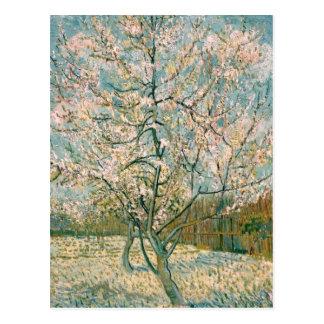 Árbol de melocotón rosado de Van Gogh en el flor ( Tarjetas Postales