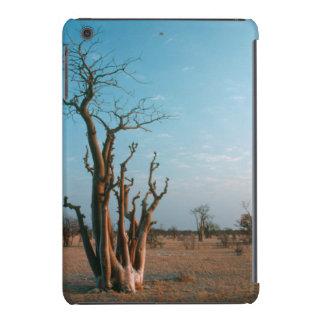Árbol de Moringo del africano en el llano, Funda De iPad Mini