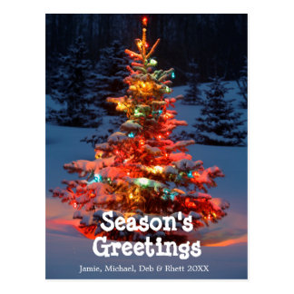 Árbol de navidad con las luces al aire libre tarjetas postales