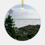 Árbol de navidad contra rocas de la playa ornamente de reyes