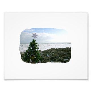 Árbol de navidad contra rocas de la playa cojinete