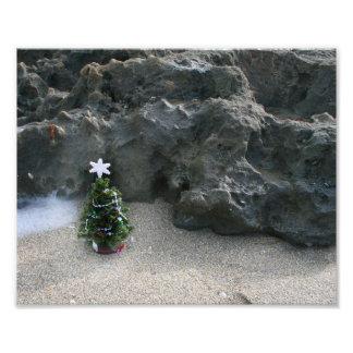 Árbol de navidad delante de Rocks jpg Fotografias