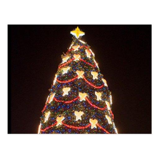 Árbol de navidad en la noche tarjeta postal