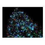 Árbol de navidad gigante I Tarjetas Postales
