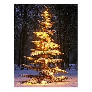 Árbol de navidad nevoso iluminado en las maderas tarjeta postal