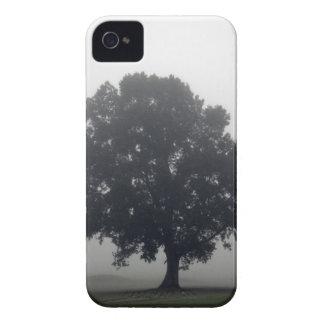 Árbol de niebla iPhone 4 coberturas