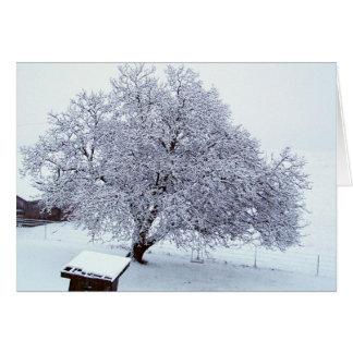 Árbol de nuez después de nevadas felicitaciones