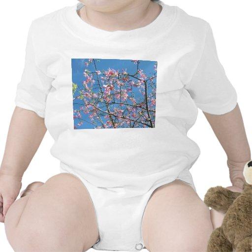 Árbol de orquídea con el cielo azul traje de bebé