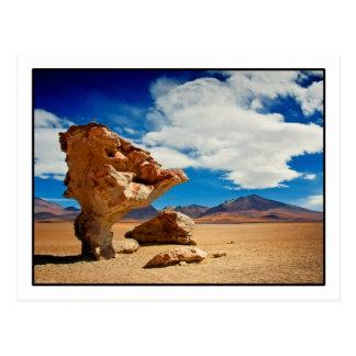 Árbol de Piedra Postcard