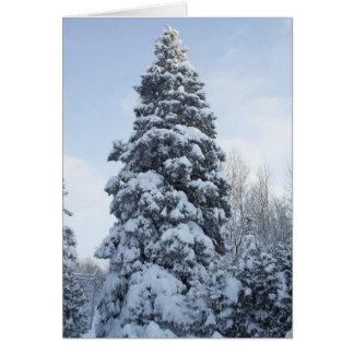 Árbol de pino alto en tarjeta Invierno-En blanco
