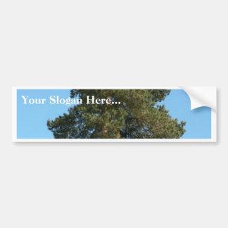 Árbol de pino etiqueta de parachoque