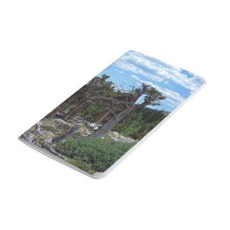Árbol de pino de Bristlecone Cuadernos Grapados