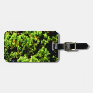 Árbol de pino etiquetas bolsa