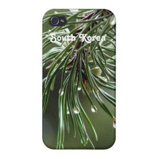 Árbol de pino iPhone 4 funda