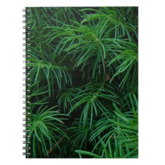 Árbol de pino libreta espiral