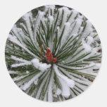 Árbol de pino nevado etiqueta redonda