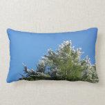 árbol de pino Nieve-inclinado en el cielo azul Cojines