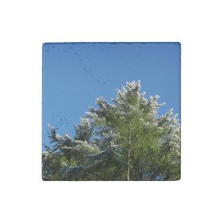 árbol de pino Nieve-inclinado en el cielo azul Imán De Piedra