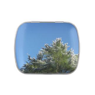 árbol de pino Nieve-inclinado en el cielo azul Jarrones De Dulces