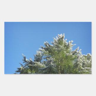 árbol de pino Nieve-inclinado en el cielo azul Pegatina Rectangular