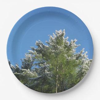 árbol de pino Nieve-inclinado en el cielo azul Platos De Papel