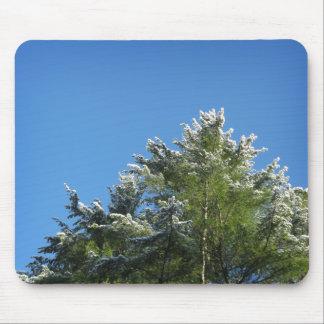 árbol de pino Nieve-inclinado en el cielo azul Tapete De Ratón