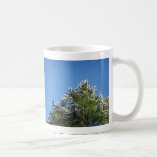 árbol de pino Nieve-inclinado en el cielo azul Taza De Café