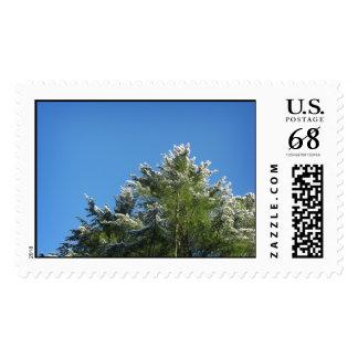 árbol de pino Nieve-inclinado en el cielo azul - Timbre Postal