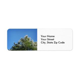 árbol de pino Nieve-inclinado en etiqueta de Etiqueta De Remitente