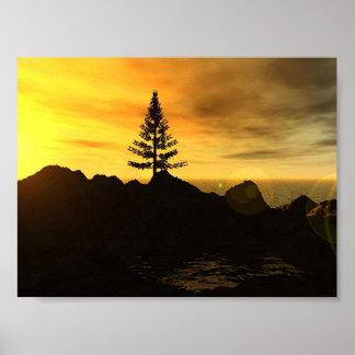 Árbol de pino póster