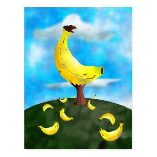 Árbol de plátano postales
