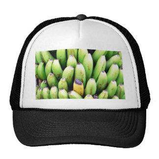 Árbol de plátanos gorra