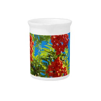 Árbol de serbal con las bayas rojas jarra de beber